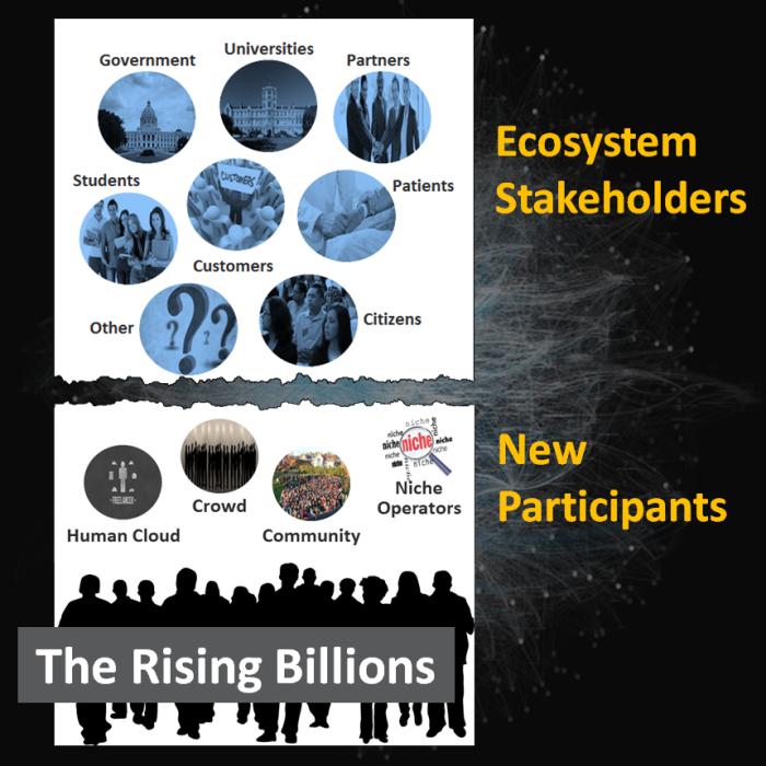 Ecosystem Participants