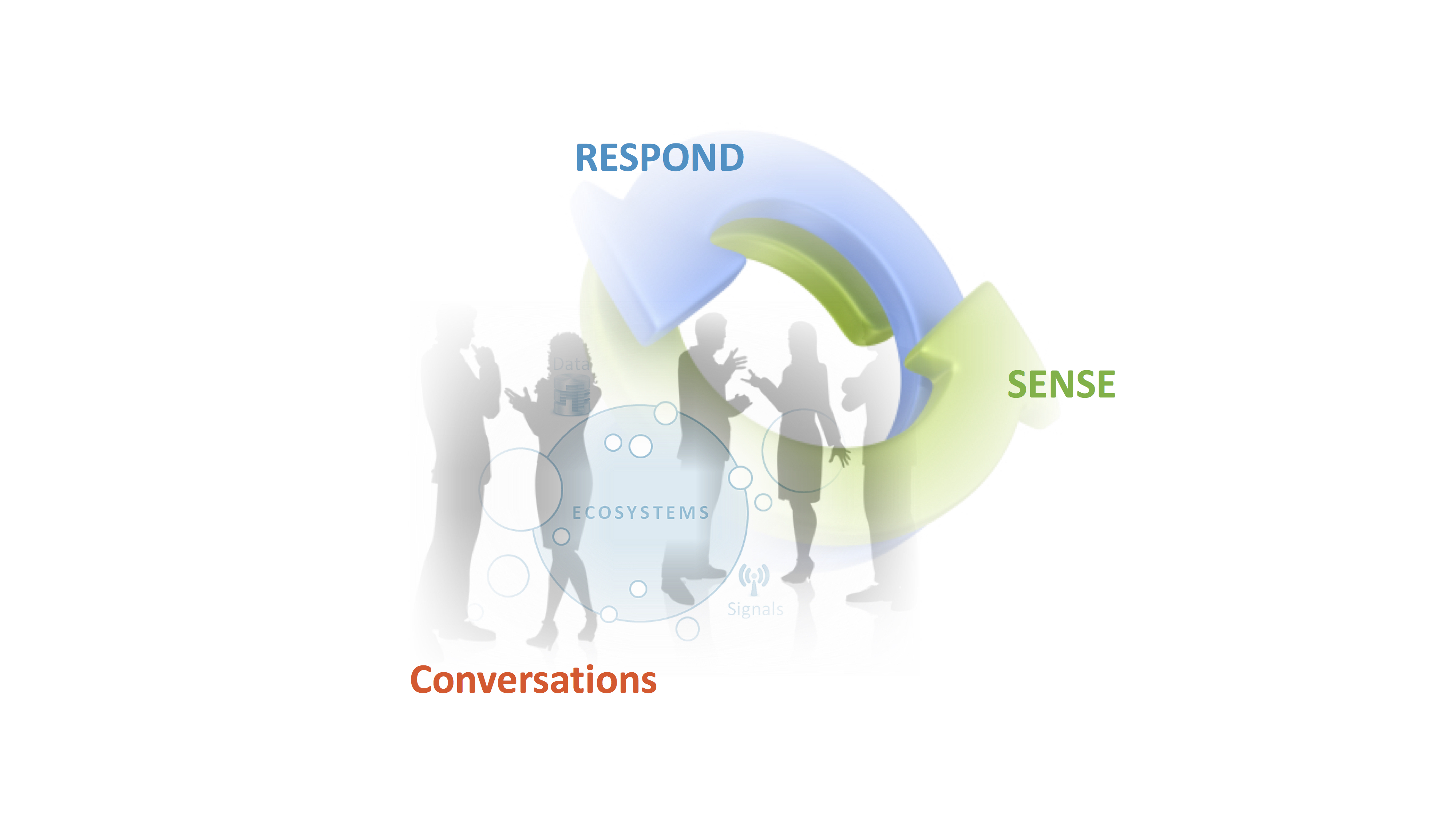 ssense-and-respond-visual
