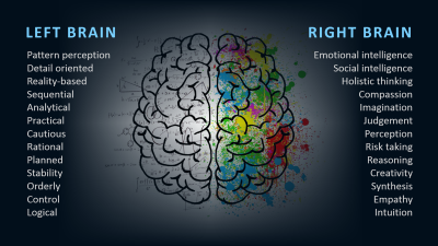 Left-Right Brain