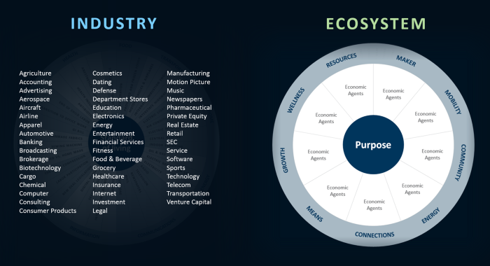 From Industry to Ecosystem